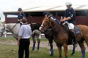 Polo Instructors New Zealand